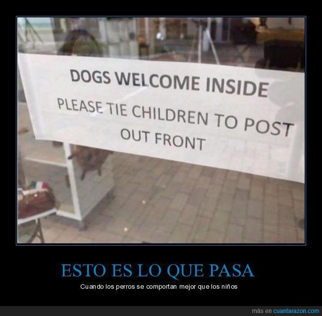 atar,cartel,correa,niños,perros,tienda