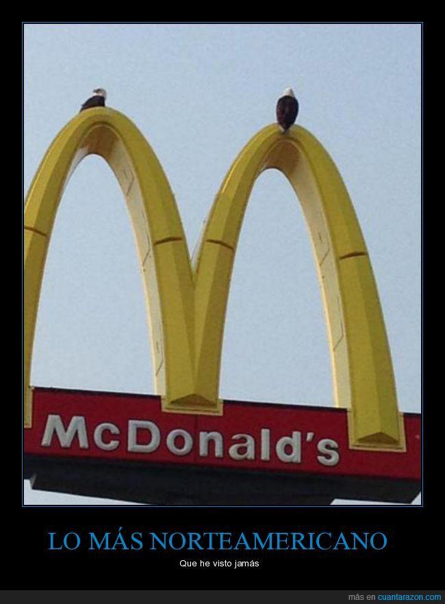 águilas,mcdonalds