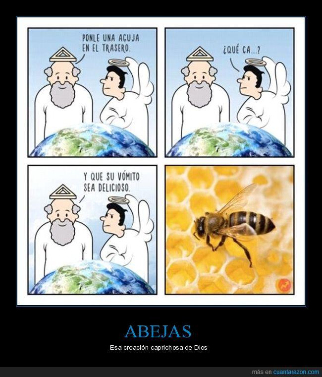 abejas,creación,miel