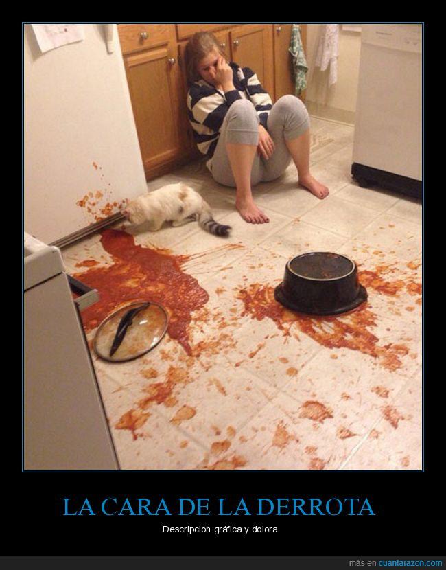 desparrame,gato,olla,tomate