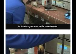 Enlace a Este experimento con una hamburguesa de McDonald's te dará ganas de vomitar
