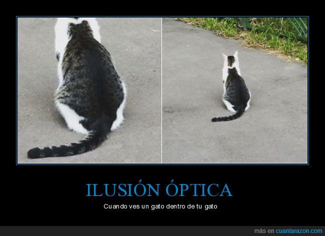 gato,silueta