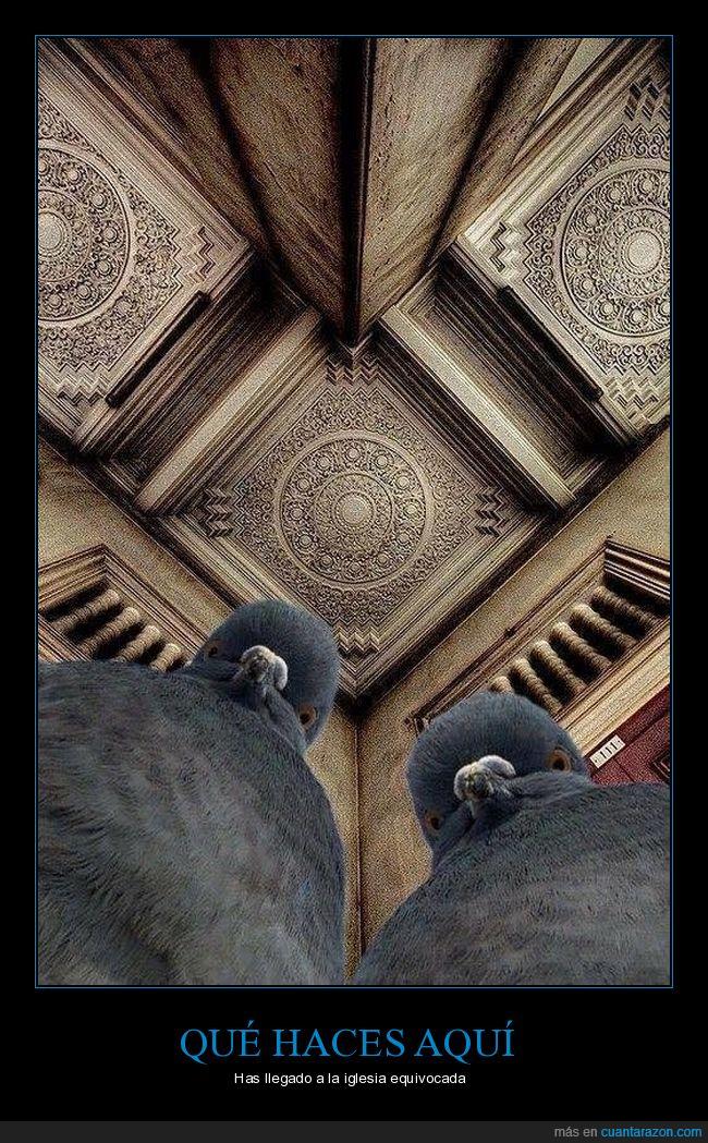 iglesia,palomas,selfie