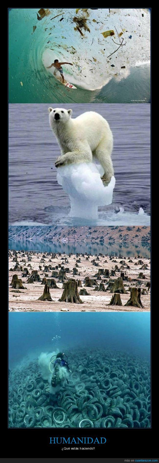 desastre,naturaleza,planeta,tierra