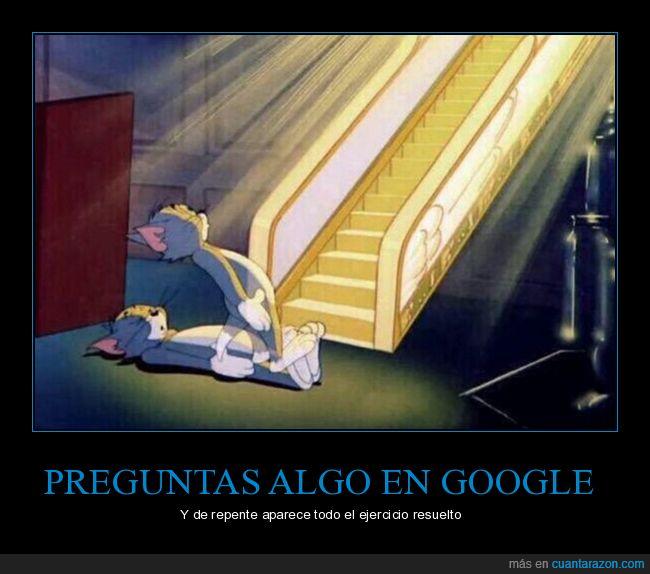ejercicio,google,respuestas