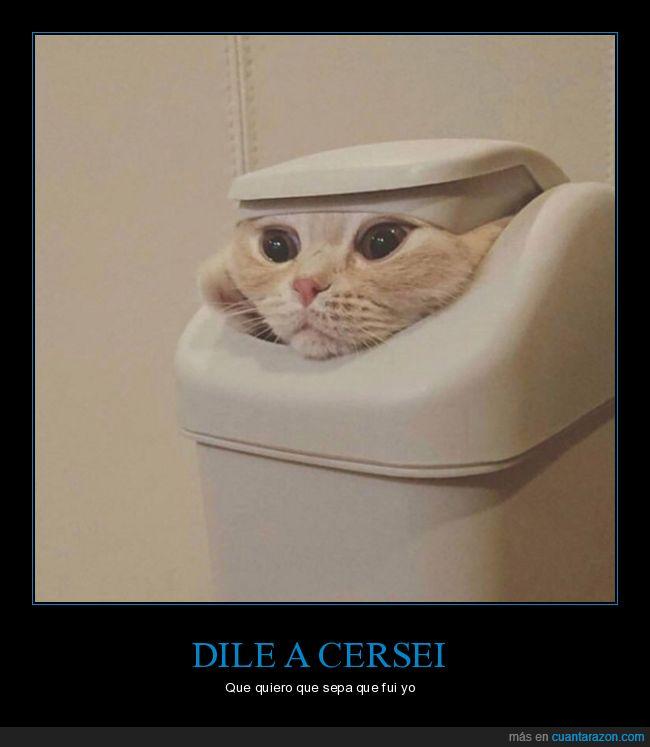cersei,gato,juego de tronos