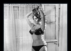 Enlace a Sophia Loren ¿si ella lo tenía claro por qué tú no?