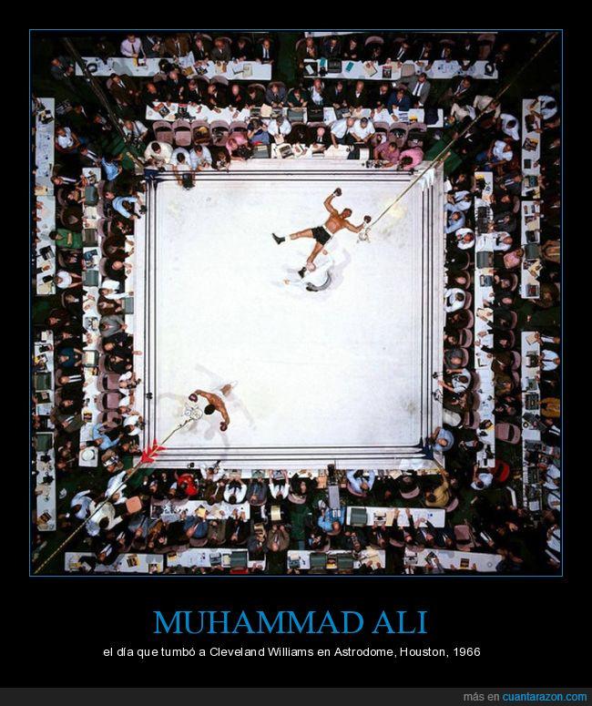 boxeo,muhammad ali,ring