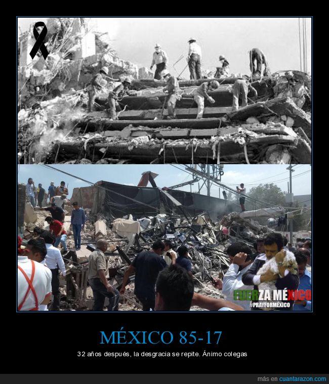 animo,atrapados,buscando,críos,desastre,FuerzaMexico,terremoto