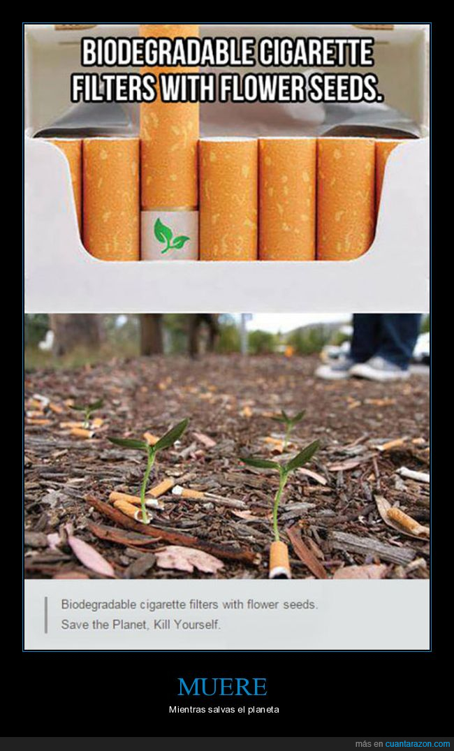 biodegradables,cigarrillos,plantas