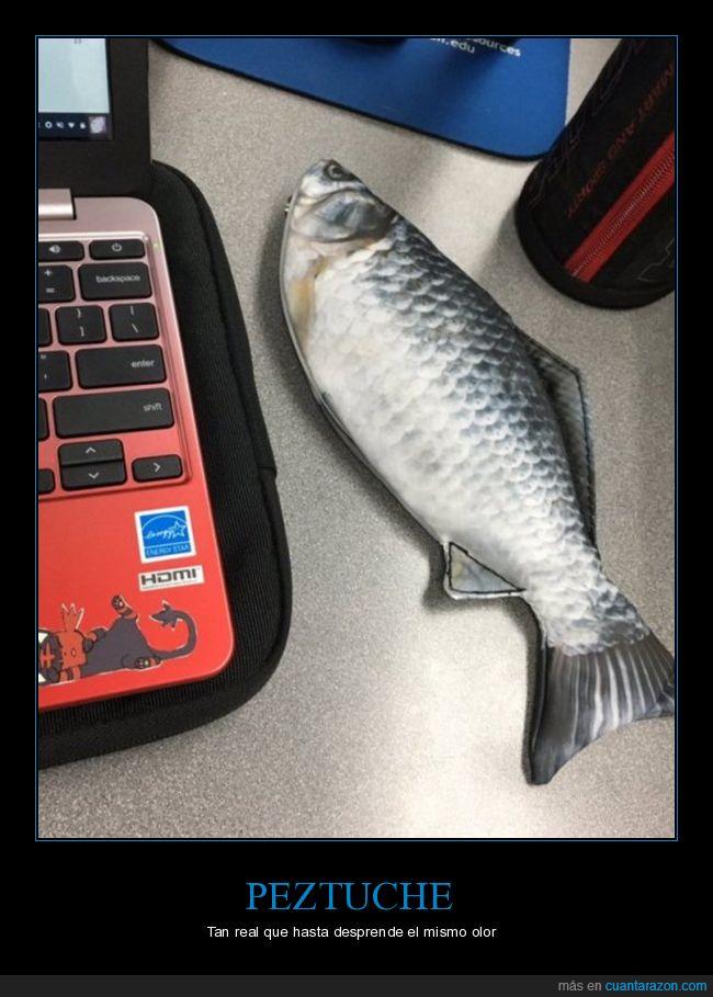 estuche,pez