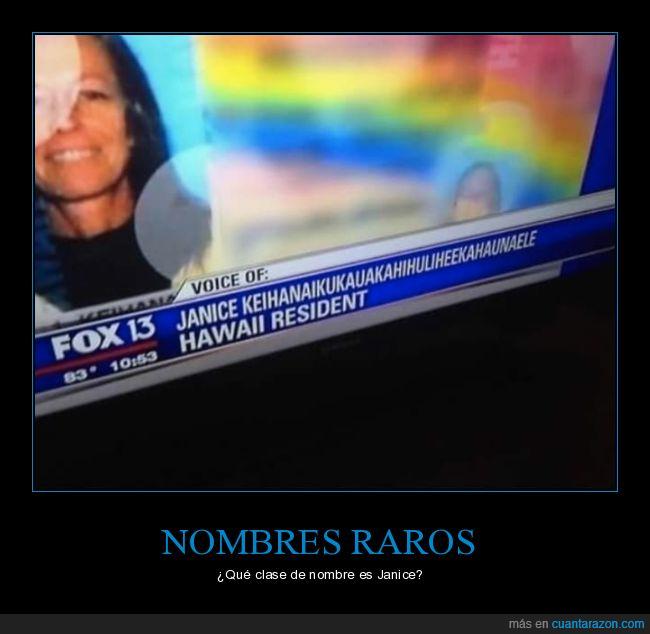 fox13,janice,telenoticias
