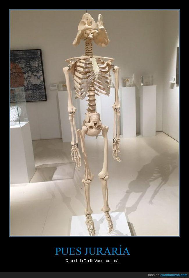 Darth Vader,equivocarse,esqueleto
