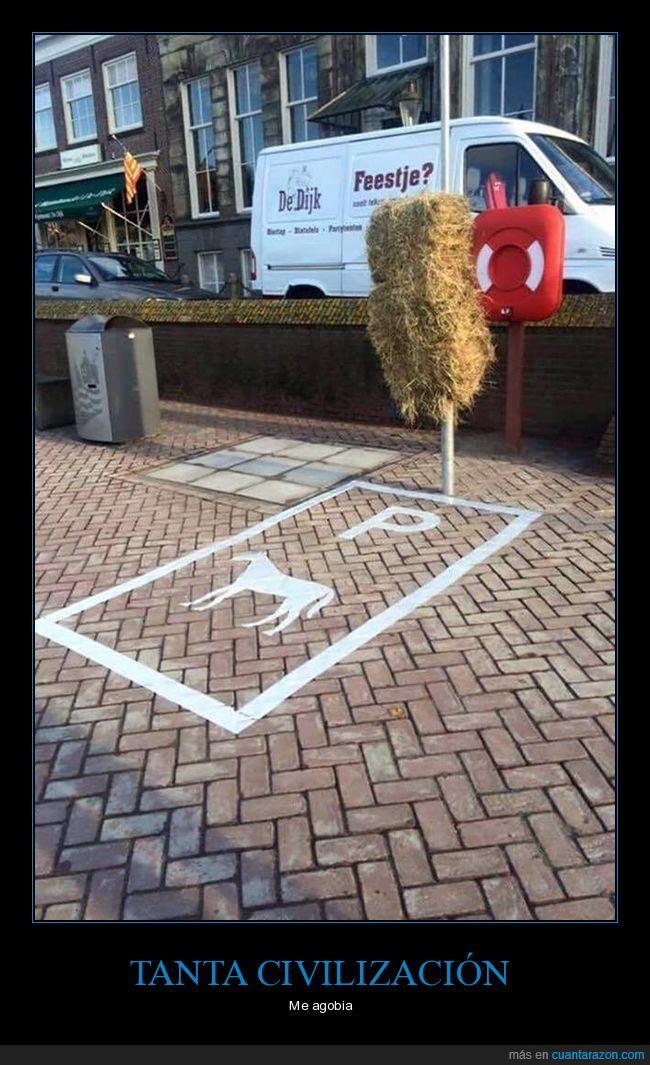 caballo,heno,parking