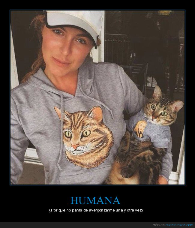 camiseta,foto,gato,sudadera