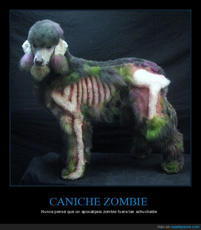 caniche,zombie