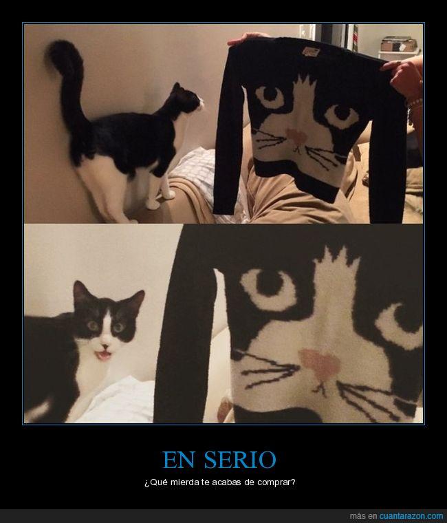 gato,jersei