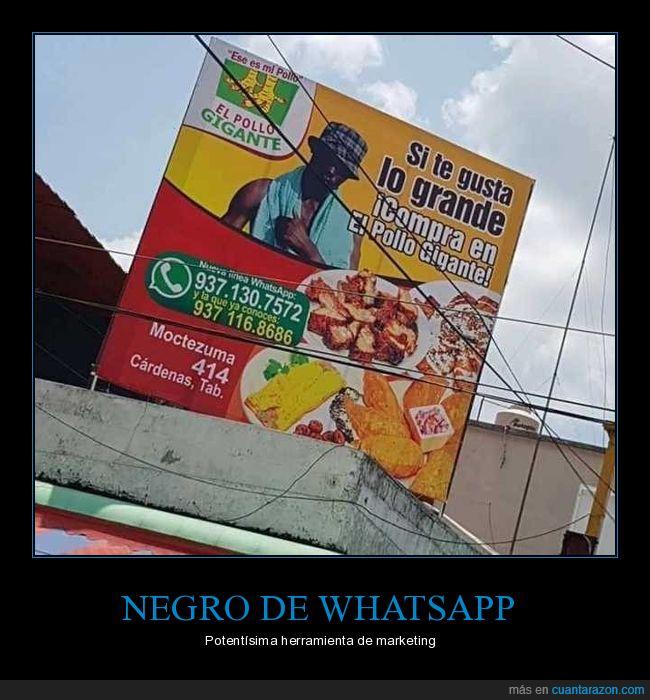 anuncio,México,Negro Watts app,pollo,Tabasco