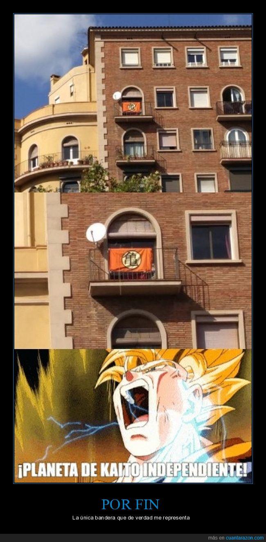 bandera,dragon ball,kaito,son goku