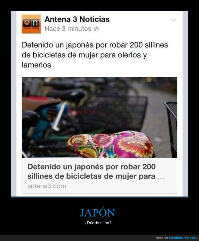 bicicleta,japoneses,sillin
