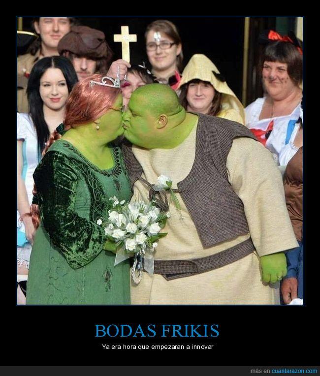 cosplay,Fiona,Shrek