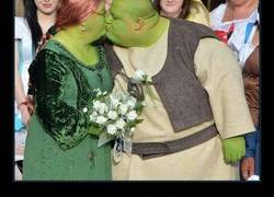 Enlace a La boda de Shrek y Fiona