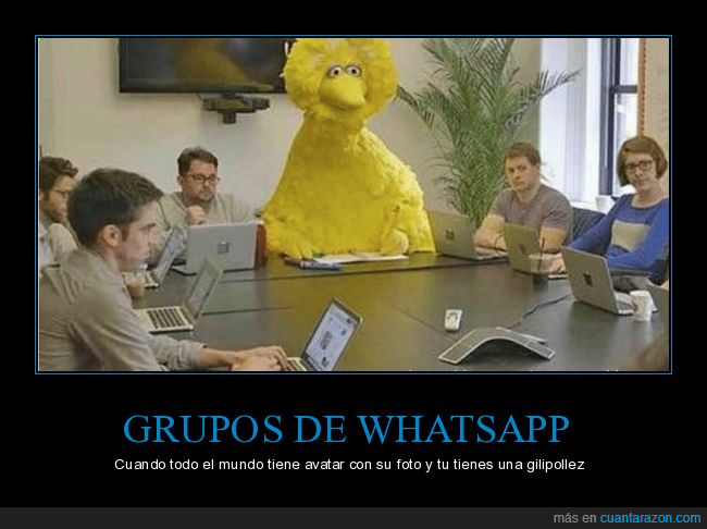 gallina caponata,grupo,whatsapp