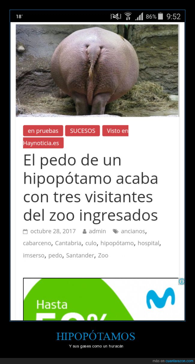 gases,hipopótamos,Pedos,zoológico