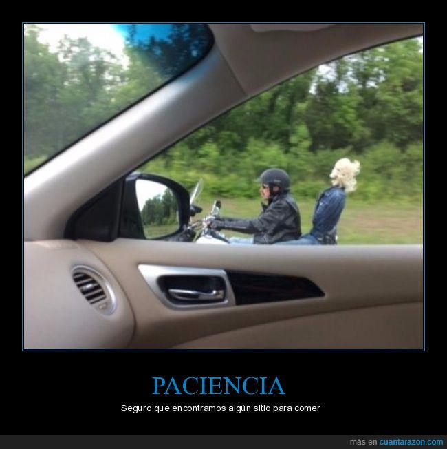 calavera,moto,motorista