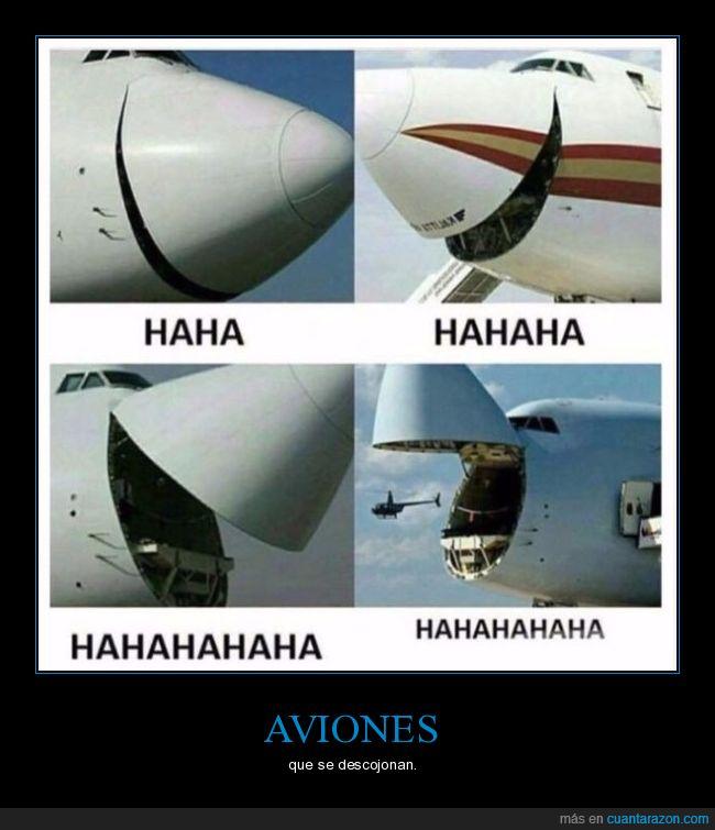 avion,risa