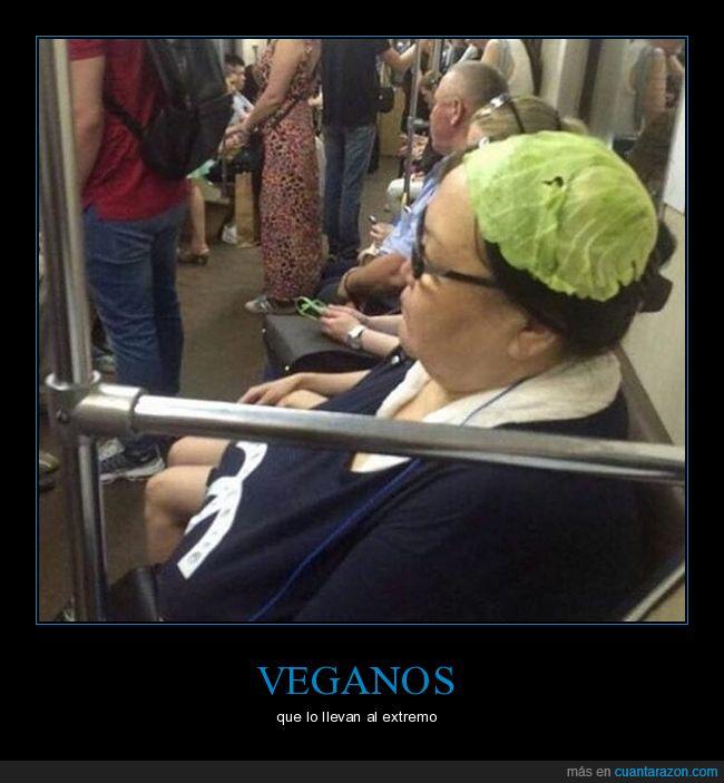 llevar,veganos,vesir