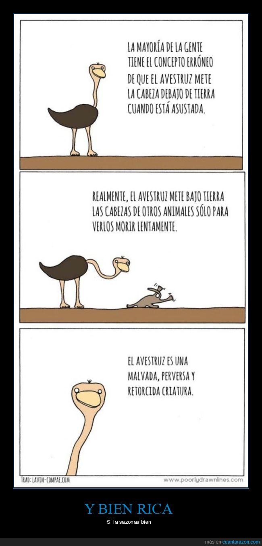 avestruz,malvada,perversa