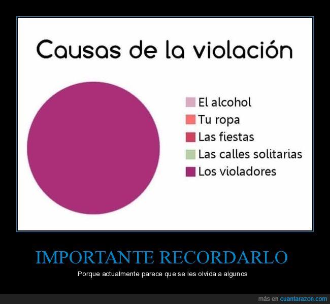 causas,solo 1 culpable,violación