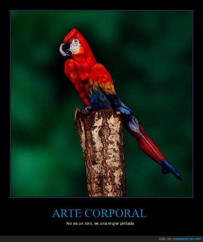 arte,loro,mujer,pintura