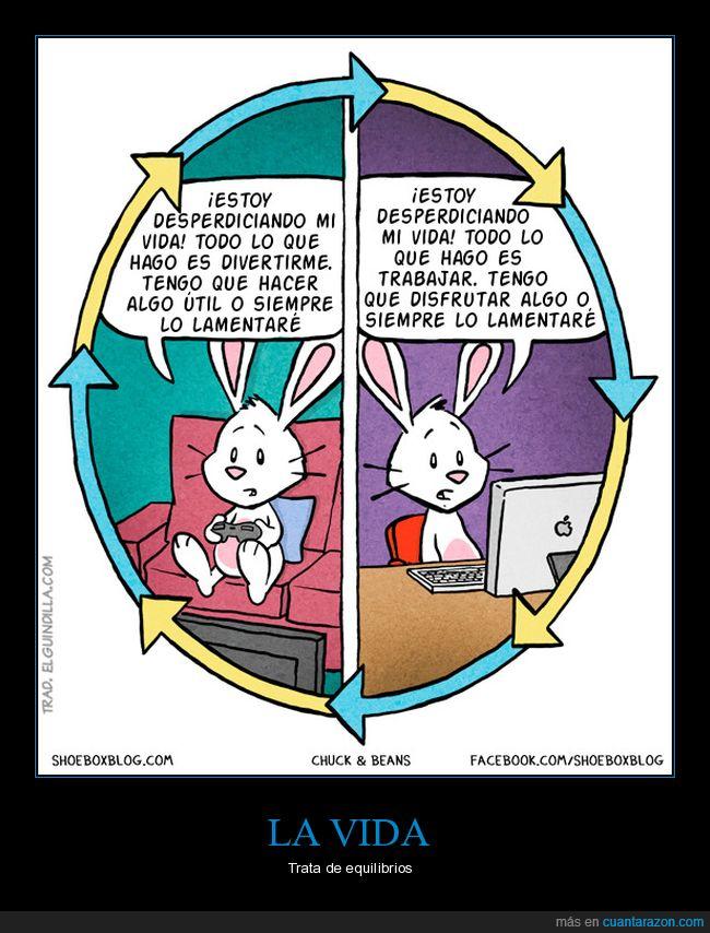 conejo,entretenimiento,trabajo
