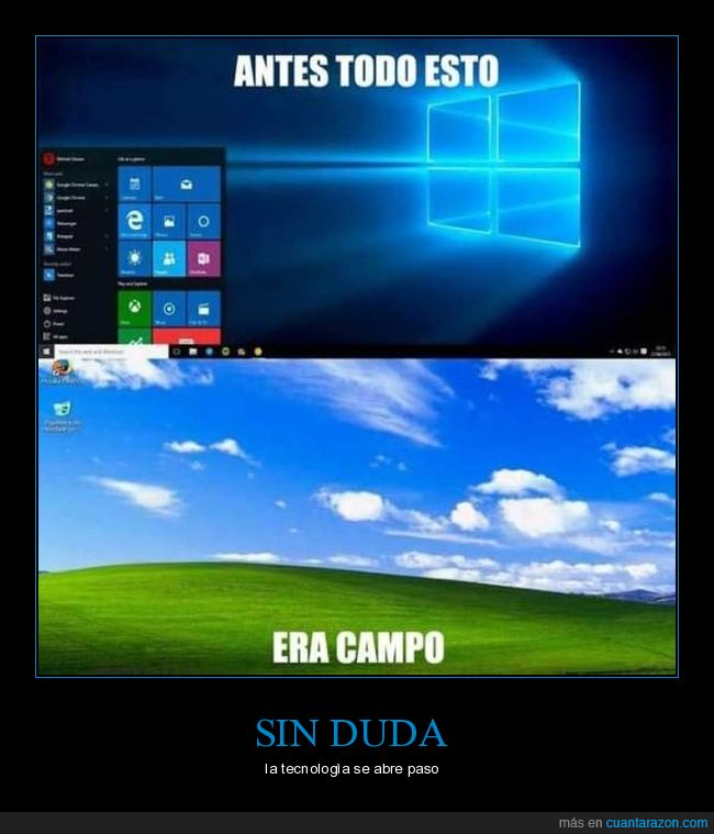 campo,fondo de pantalla,pantalla,windows