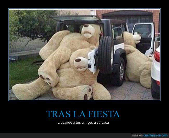 osos,Tedy