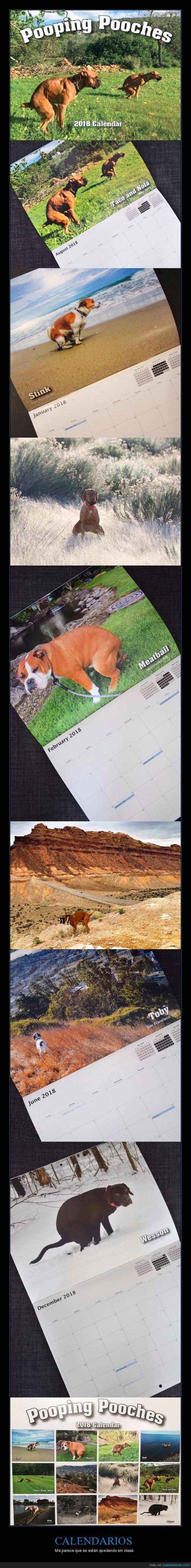 cagando,calendario,perros