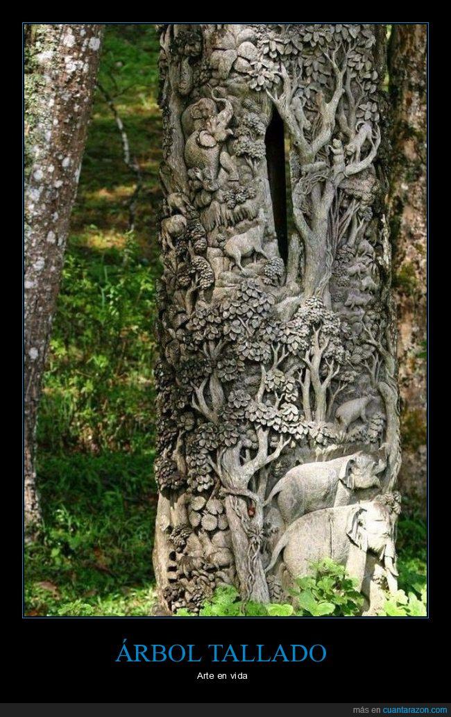 árbol,bosque,formas