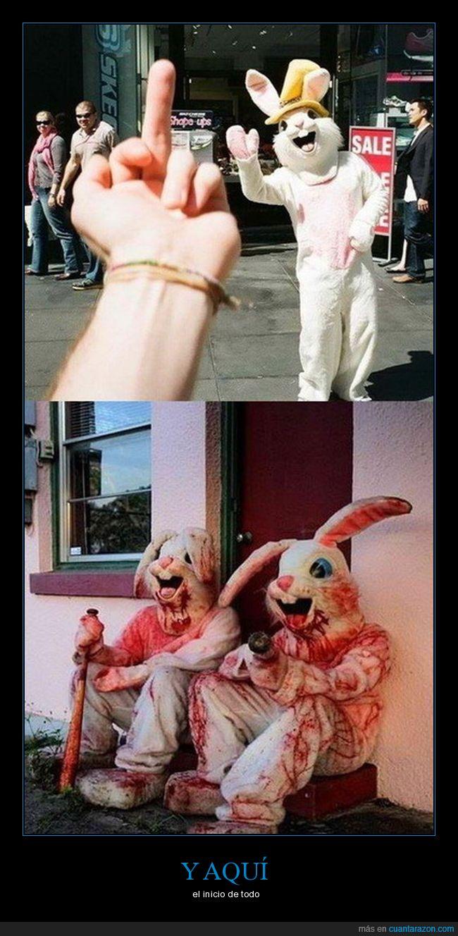 botarga,conejo