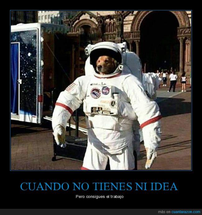 astronauta,ni idea,perro,trabajo