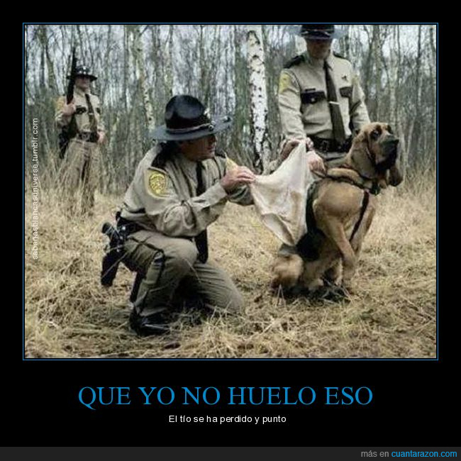 detective,perro,sabueso