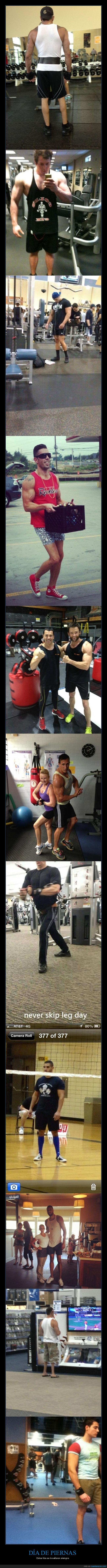 gimnasio,músculos,piernas