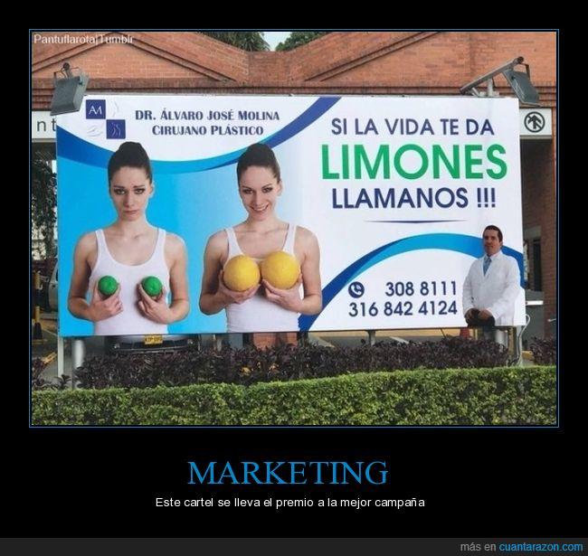 cartel,cirujano plástico,limones,publicidad