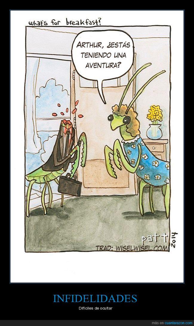 cabeza,infidelidad,mantis
