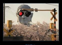 Enlace a Buda prefiere ver las pelis en 3D
