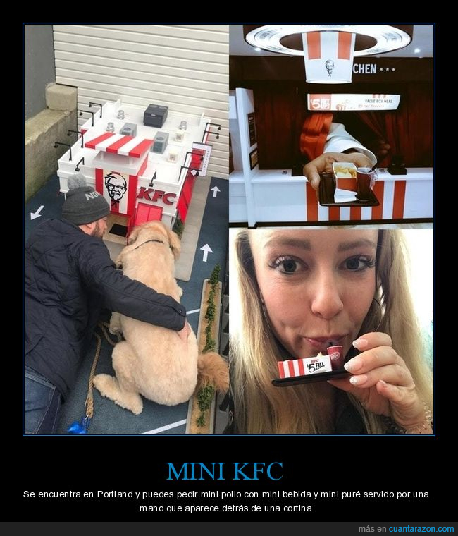 kentucky,kfc,mini