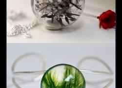 Enlace a Naturaleza y arte en una joya