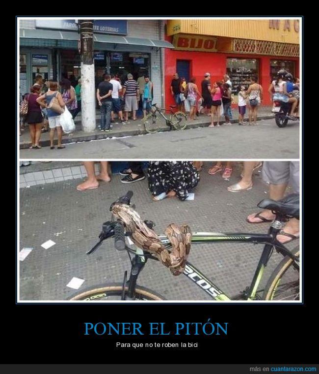 bicicleta,serpiente