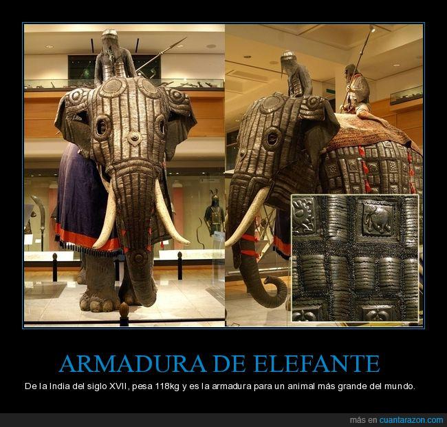 armadura,curiosidades,elefante,india